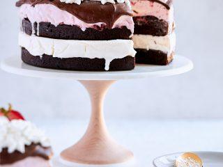 Neapolitan Brownie Ice Cream Cake